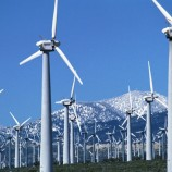 Planned wind farms could endanger birds