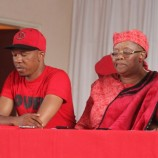 DC leagues defect to Moleleki