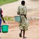 UNDP hails women, govt