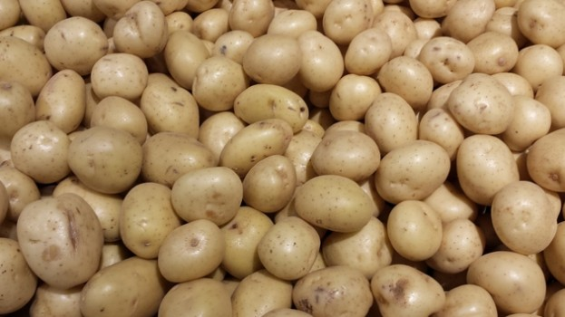 Potato growers host farmers' market