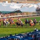 DStv customers all set for Durban July