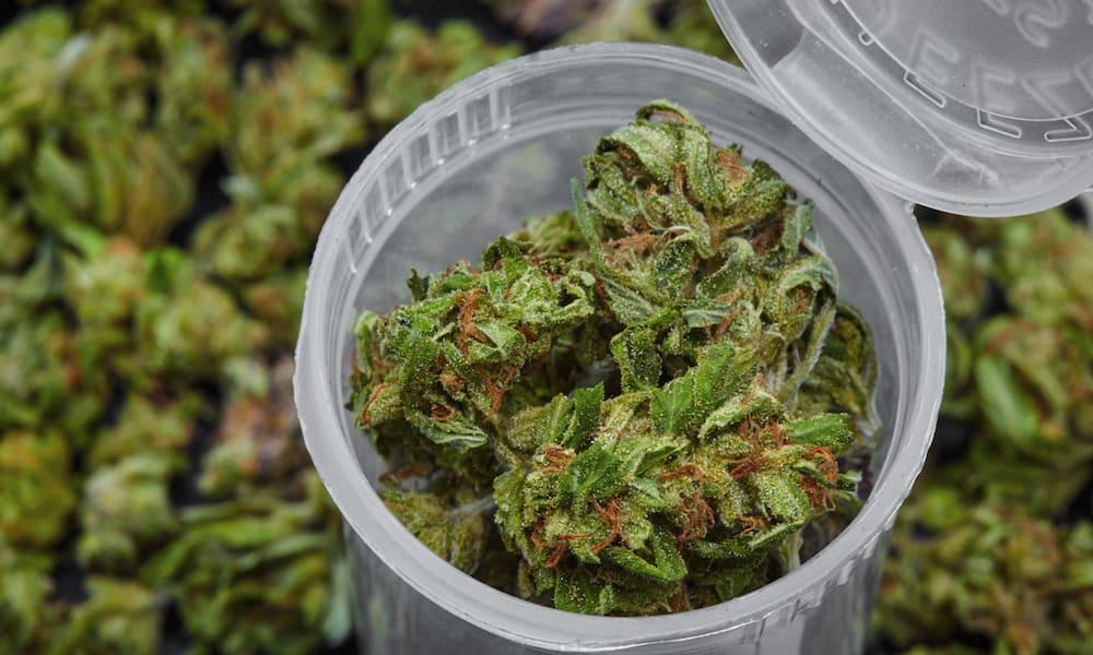Image result for Medical Marijuana