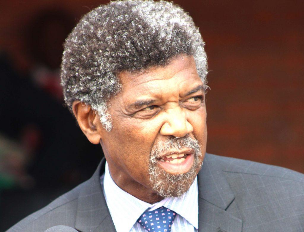 Minister of Police and Public Safety Monyane Moleleki  (1)