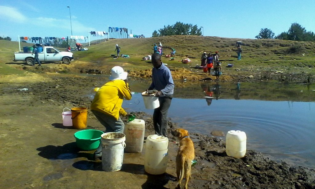 This dog looks at the residents drawing water for laundry, cooking and drinking, farming at the dam next to Temong